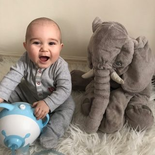 An amused baby boy holding the bear-shaped Nosiboo Pro by its ears while sitting on a bed next to a plush elephant